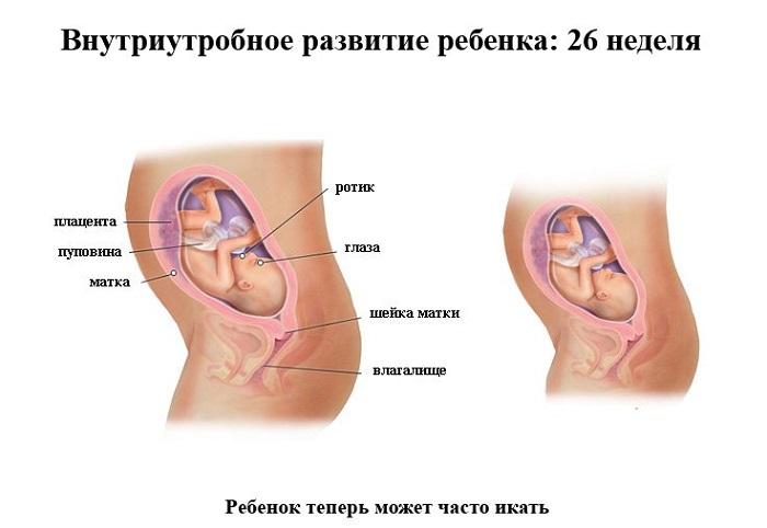 26-я неделя беременности
