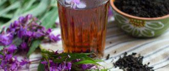 польза иван-чая для организма человека
