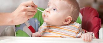 Рацион ребенка в 6 месяцев на ИВ