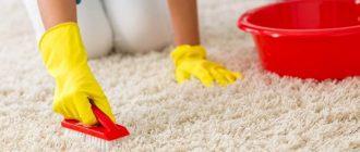 чистка паласа дома