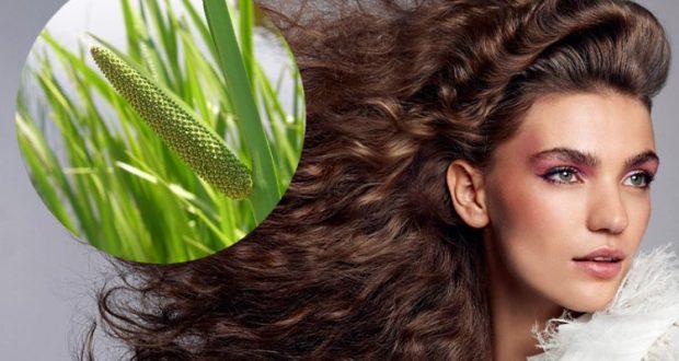 Аир для волос