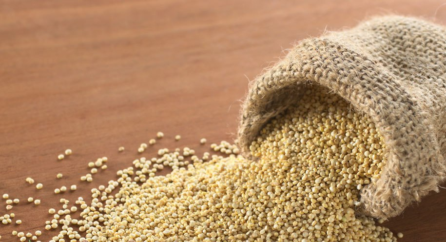 Полезные свойства амаранта