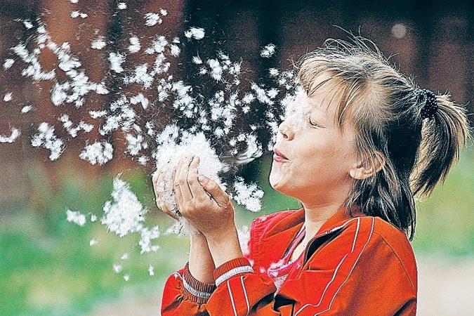 Аллергия-на-пух