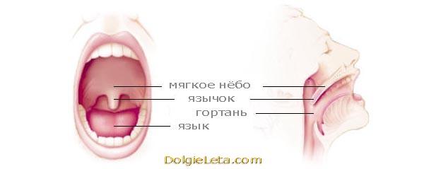 kak-izbavitsya-ot-hrapa-prichiny-ego-vozniknoveniya-i-lechenie2019-02-12