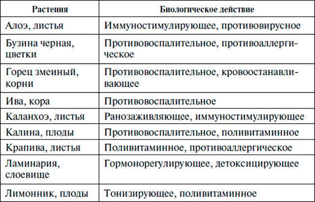 kalanhoe-lechebnye-svoystva-i-nekotorye-lekarstvennye-retsepty2019-02-12