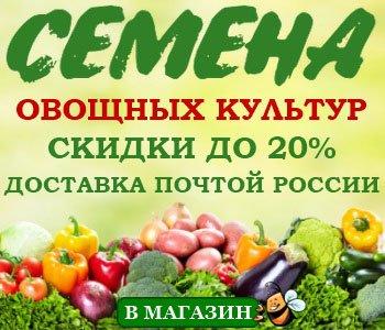 romashka-aptechnaya-primenenie-i-ee-svoystva2019-02-12