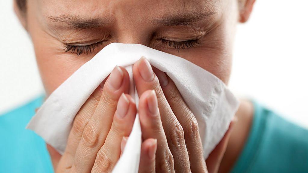 allergiya-na-koshek-est-li-vyhod2019-02-13